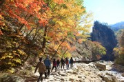 Fall Colours Schedule, Sept-Nov 2014, Around Korea